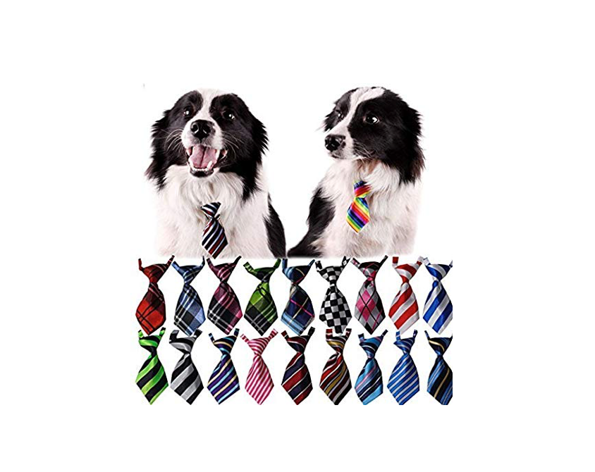 This collection of 30 dog neckties for people who can't help but buy in bulk