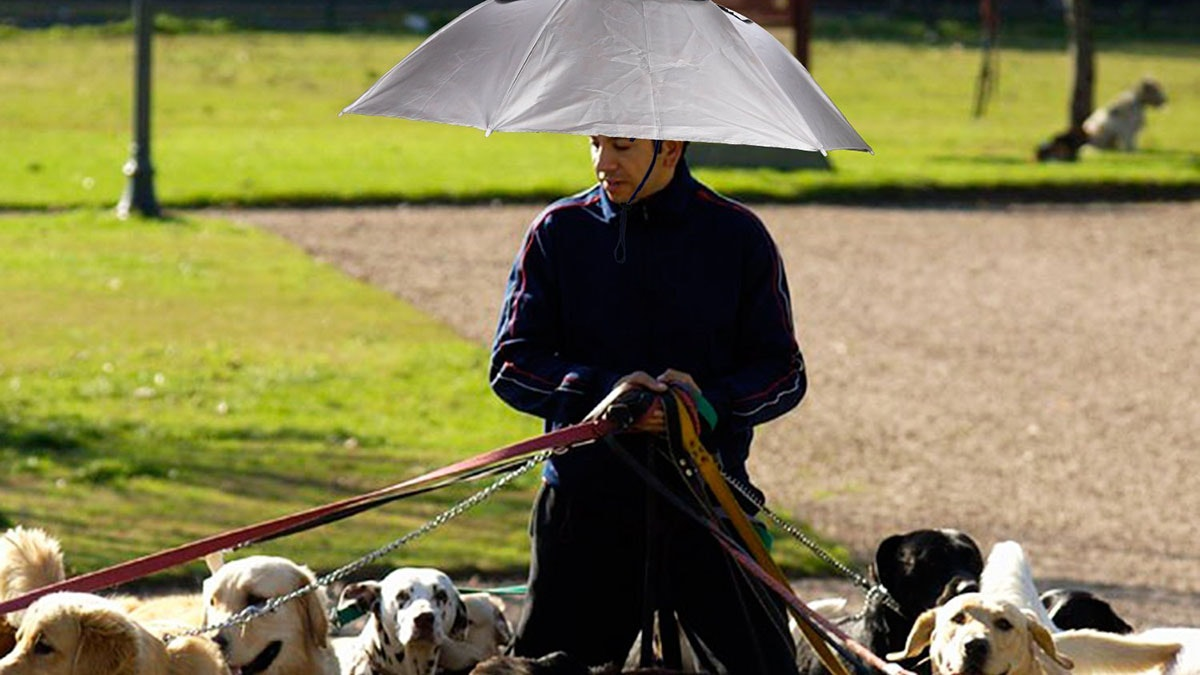 This umbrella hat... for dog walkers? ☂️