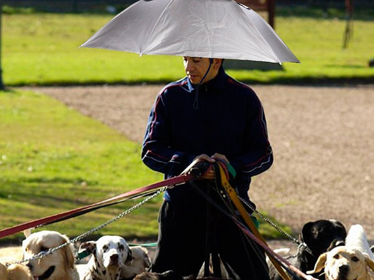 This umbrella hat... for dog walkers?☂️