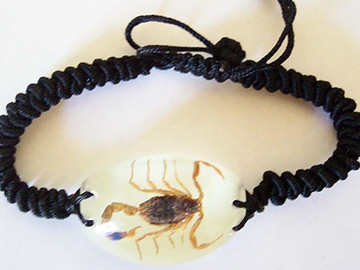 This stylish bug bracelet 🦂