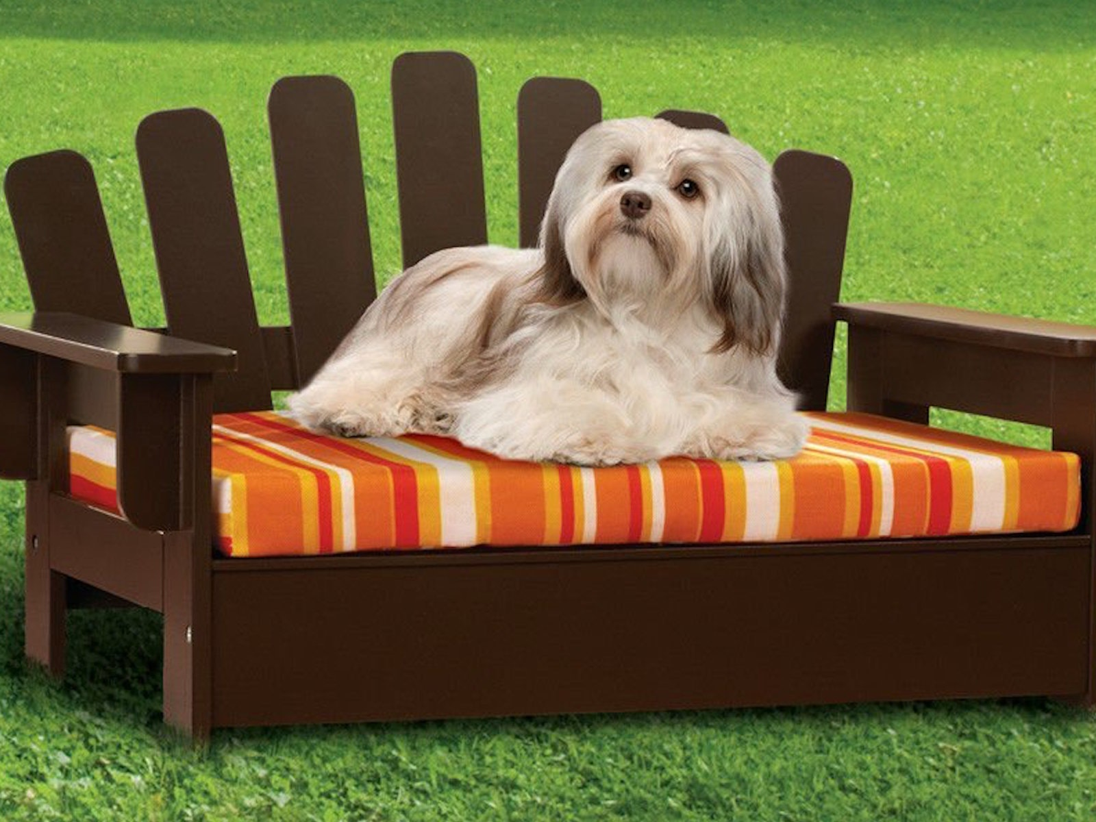 This luxe lawn chair for dogs