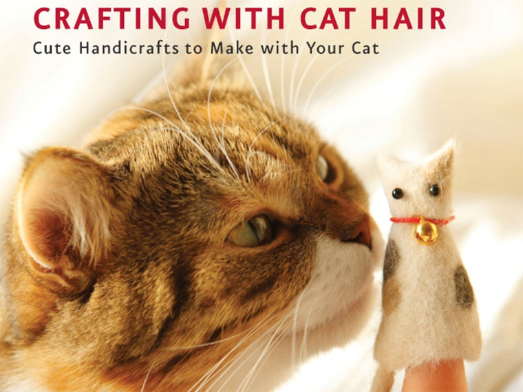 This craft book for only the craziest of crazy cat ladies 🐈🐈🐈