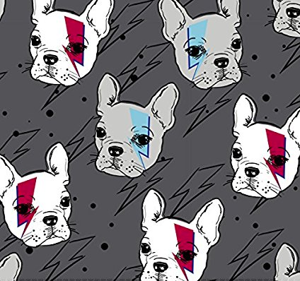 This perfect Frenchie blanket for David Bowie fans