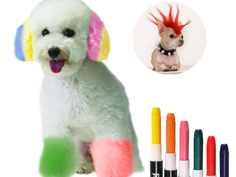 These pens forgiving your dog the