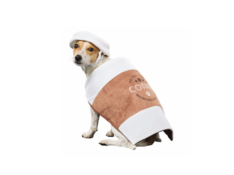 This caffeinated costume for hyperactive doggos