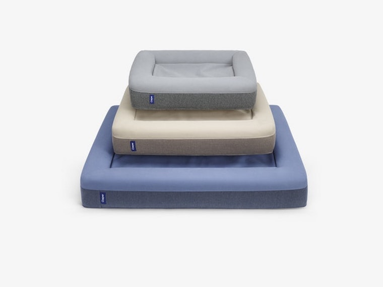 This dog-sizedCasper mattress