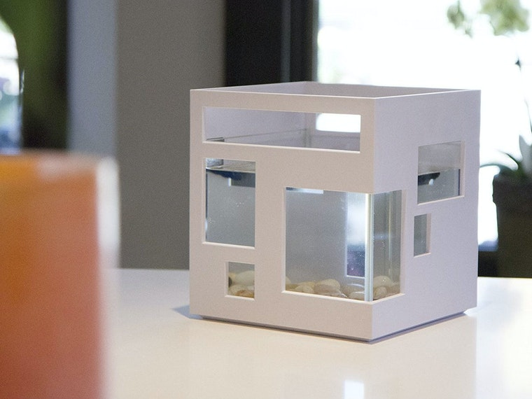 This new upscale home for your tiny fish friends