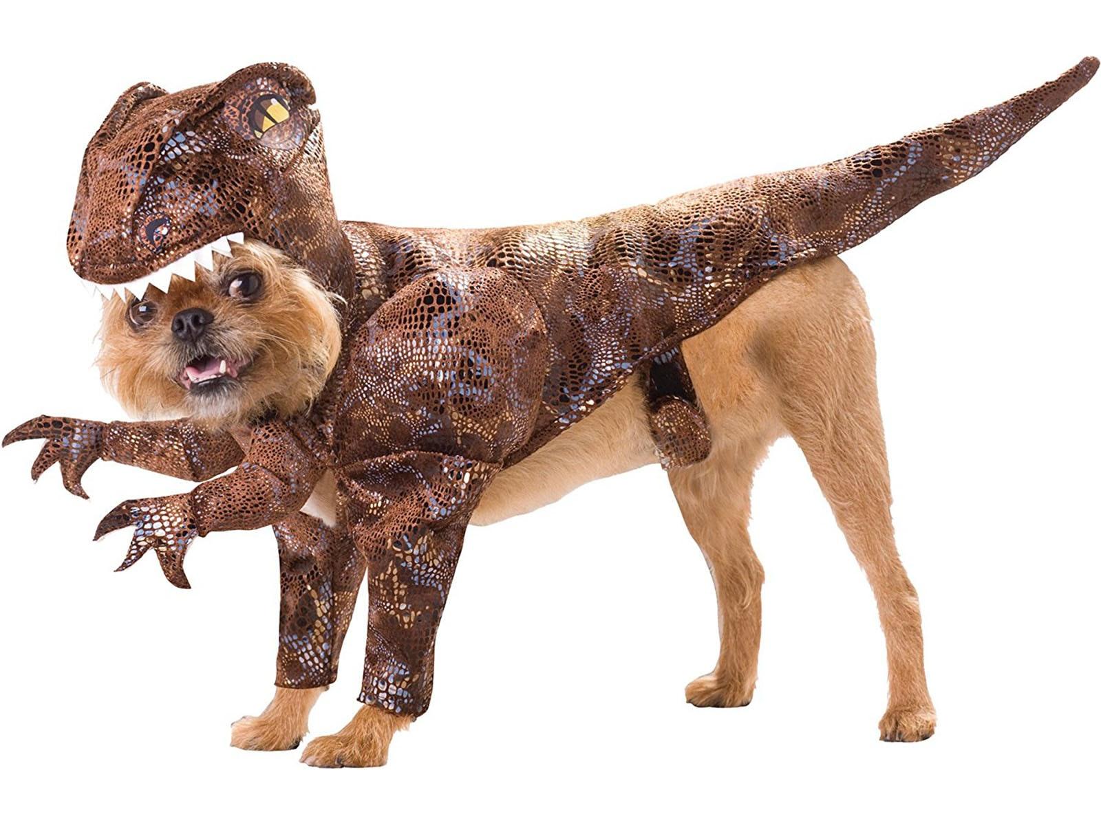 This amazing dinosaur costume