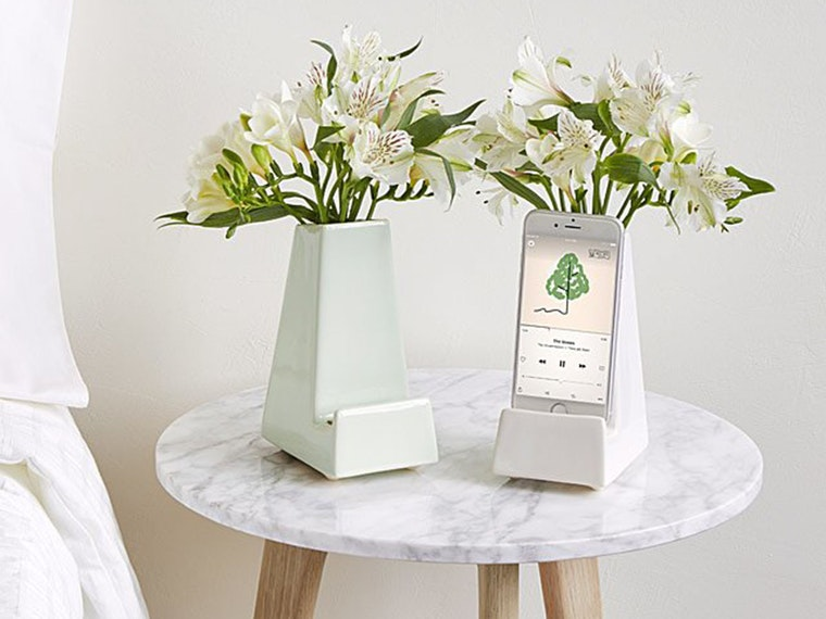 This beautiful bedside vase... with a purpose!