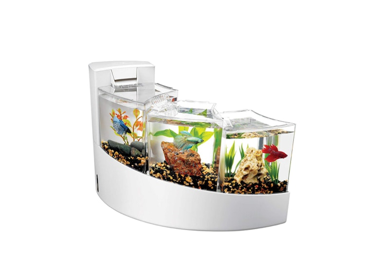 This waterfall tank for your favorite fishes 🐟🐟🐟
