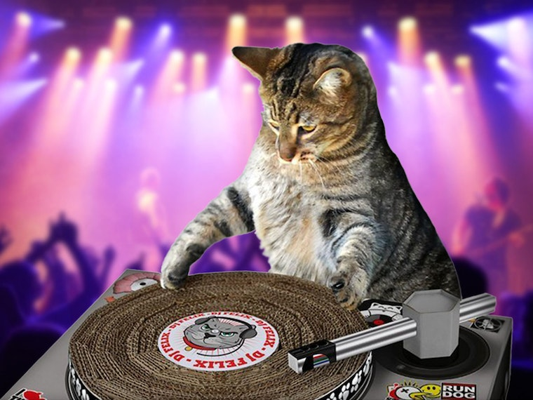 Ascratching post that turns yourcat into an EDM superstar