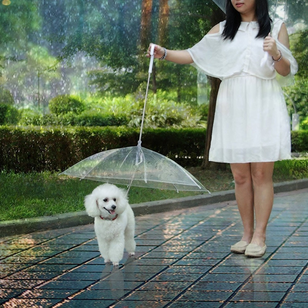 This umbrella that keeps your pets dry