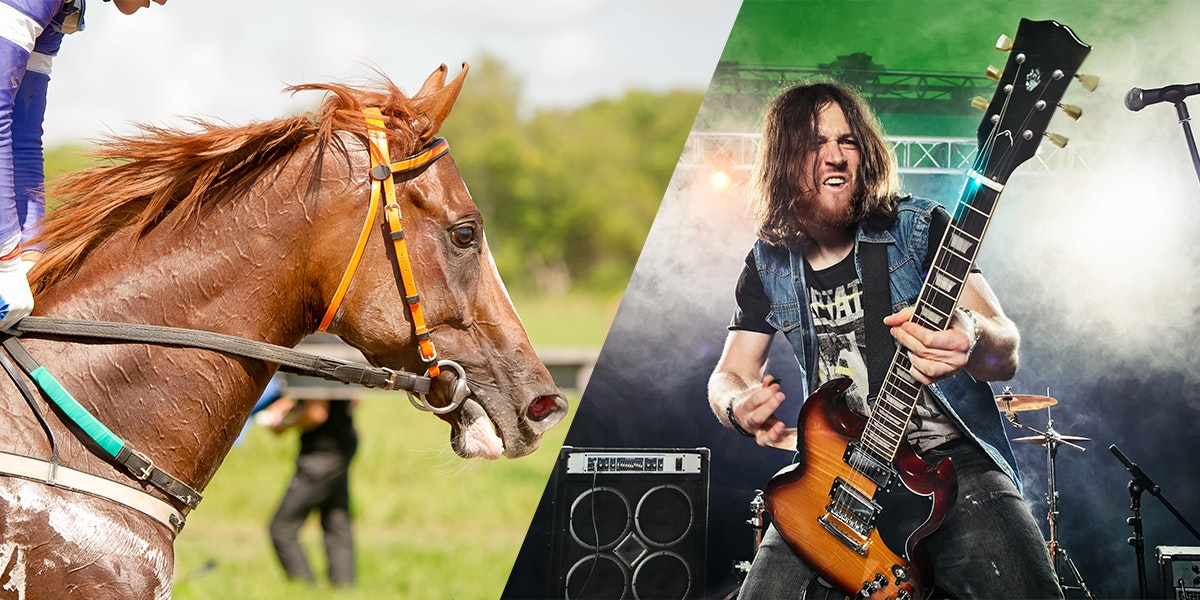 Quiz: Is This a Kentucky Derby Race Horse or an American Band?