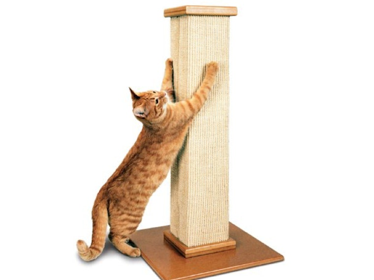 This scratching post that your cat will love more than your furniture