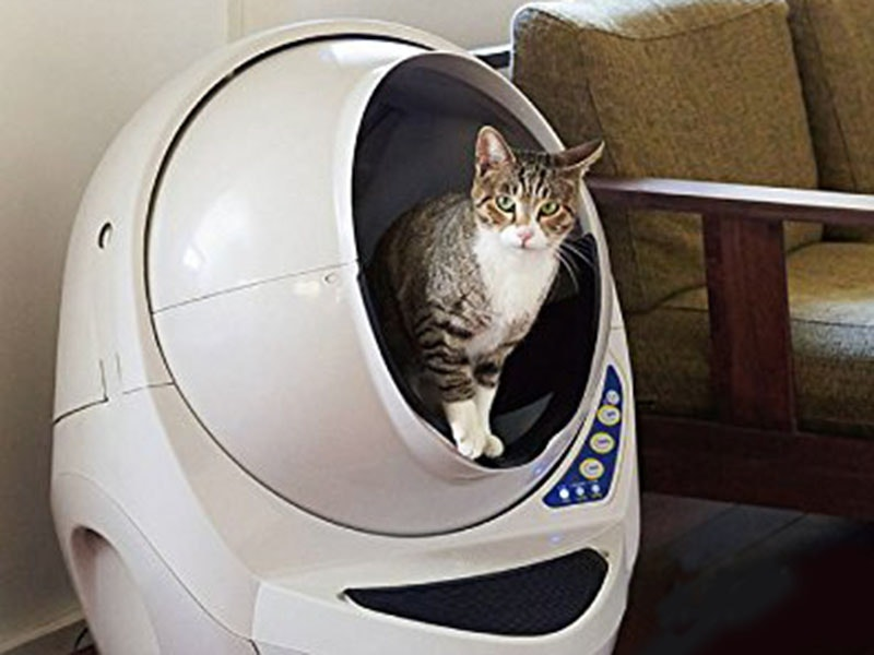 Thisautomatic cat toilet that keeps the stink at bay