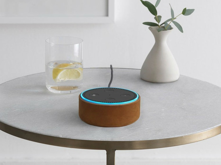 This personal digital assistant that gets your smart home started