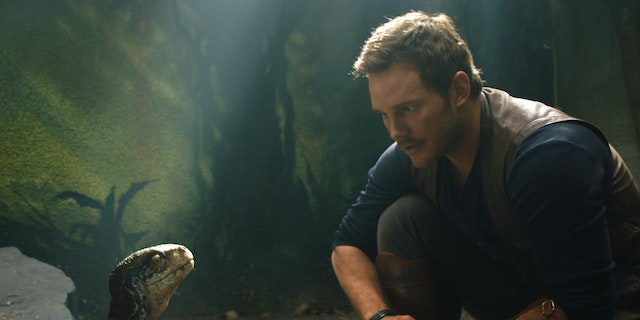Quiz: How Long Would You Last in Jurassic World?