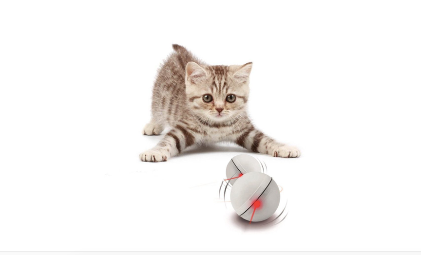 Thislight-up, self-rotatingball for your cat to hunt
