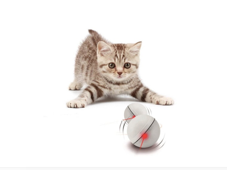 This light-up, self-rotating ball for your cat to hunt