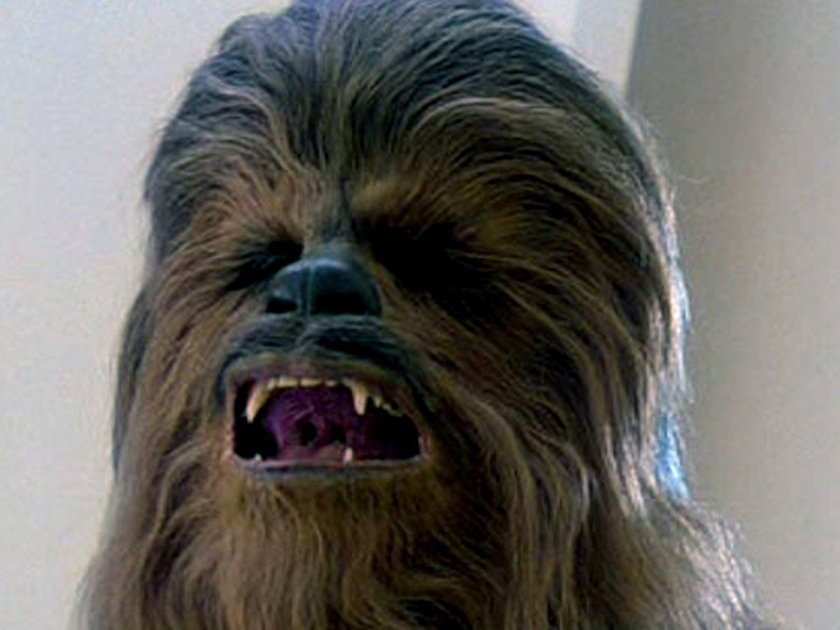 Would Chewbacca Even Like You?