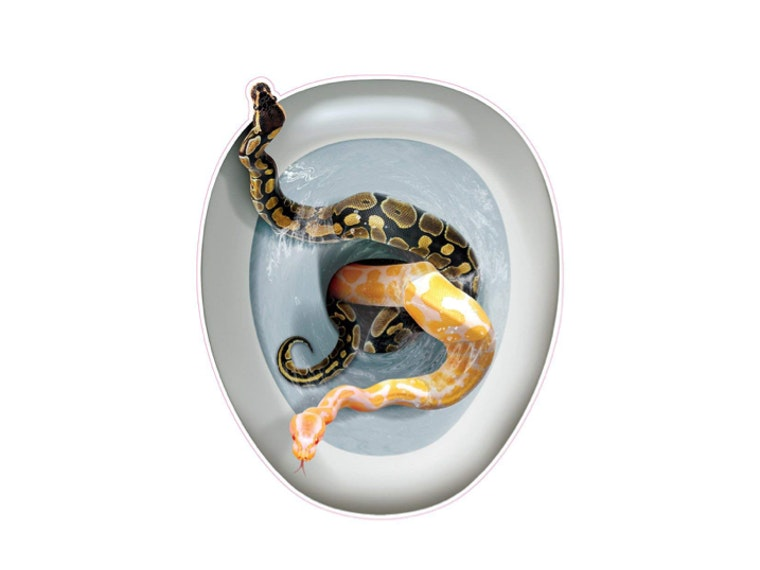 A sticker that makes it look like your toilet is filled with snakes 🐍