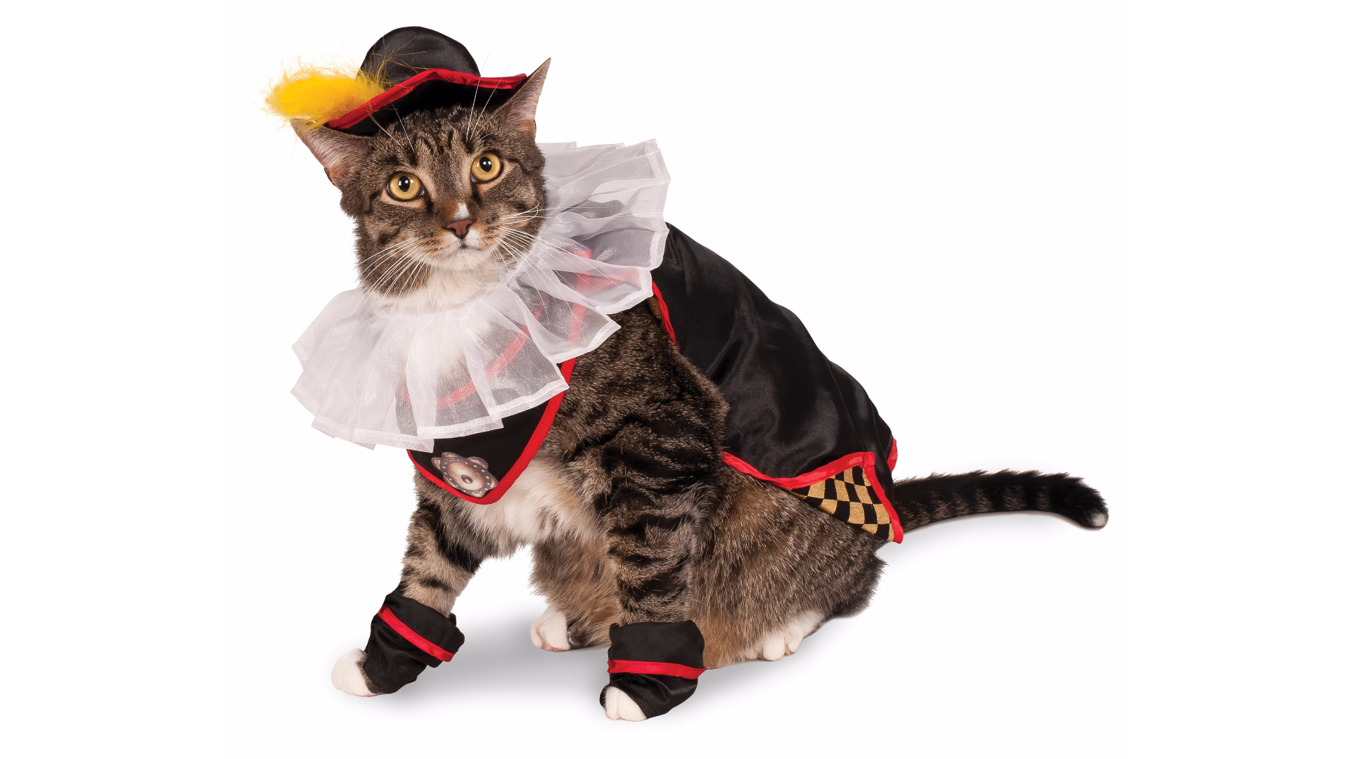 Thiscostume for fancy aristocats
