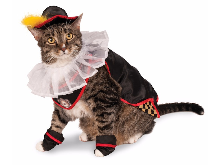 This costume for fancy aristocats