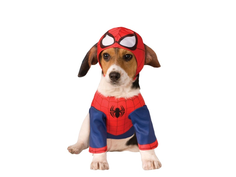 A costume for dogs that want to hang out with the Avengers