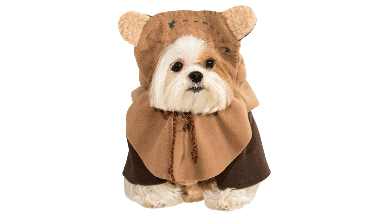 This Ewok costume for dogson Endor
