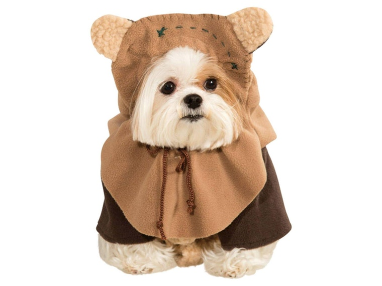 This Ewok costume for dogs on Endor