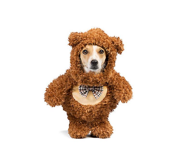 A super cuddly costume