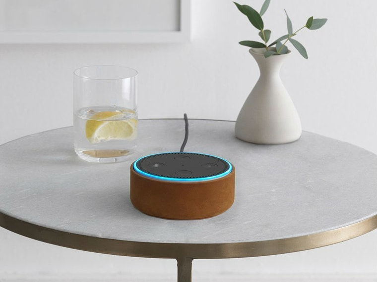 This unbelievably affordable budget alternative to the Echo