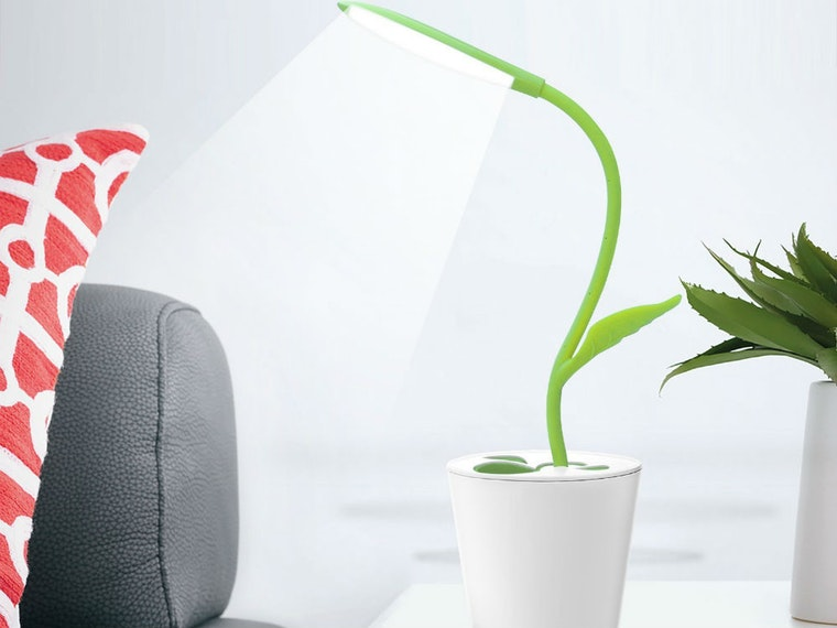 This plant-inspired desk lamp