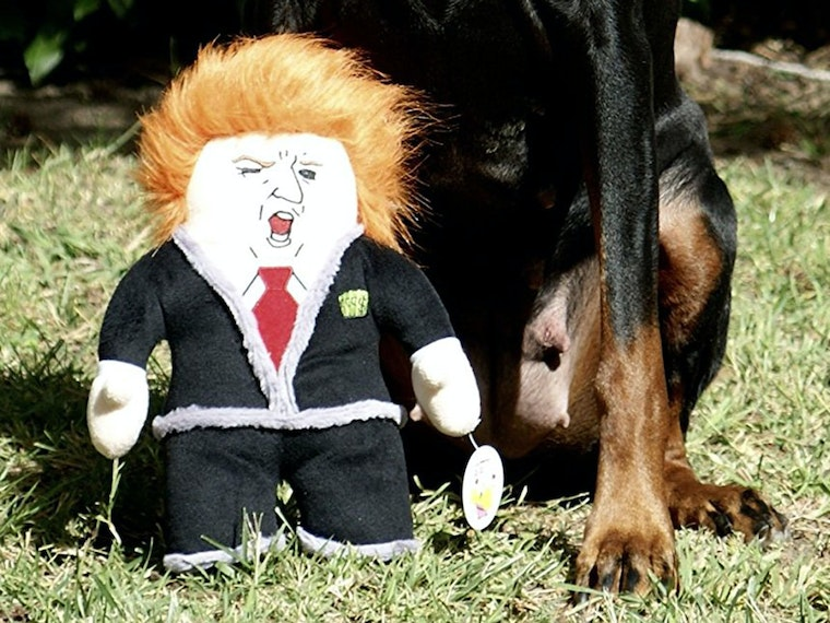 This perfect toy for Democrat dogs