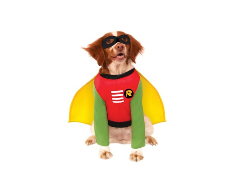 ...and this costume for Batdog's furry sidekick