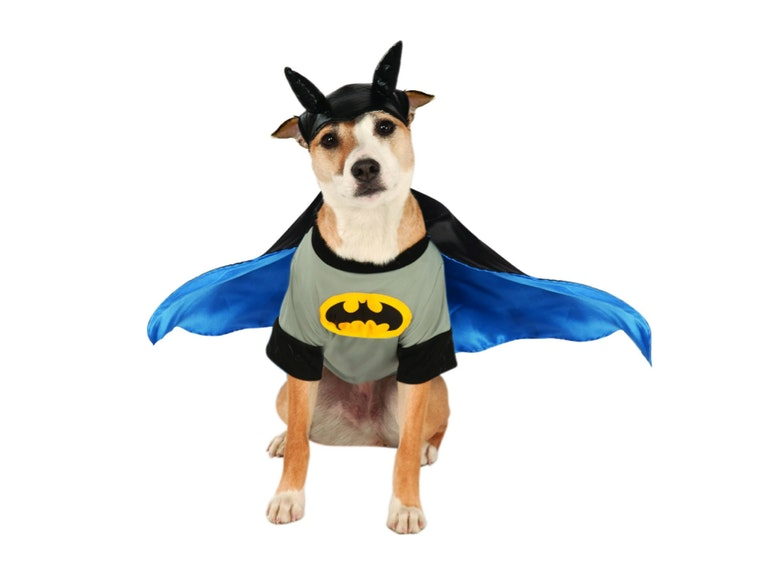 This Batdog costume for puppers with really deep, growling barks