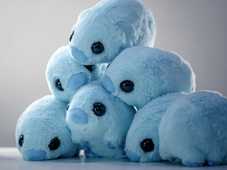These plush and cuddly ... uh, tardigrades? 🔬