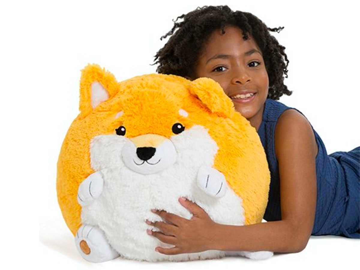 This highly squishable shibe 🐕