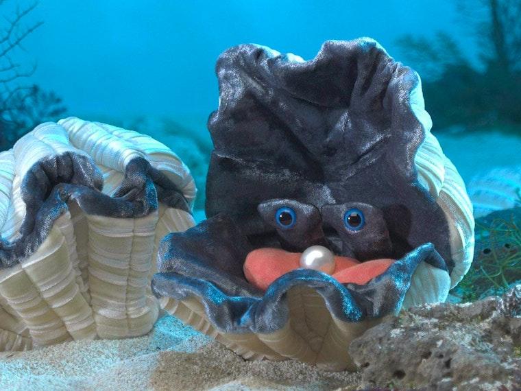 This adorable plush ... clam?!🍤🍣