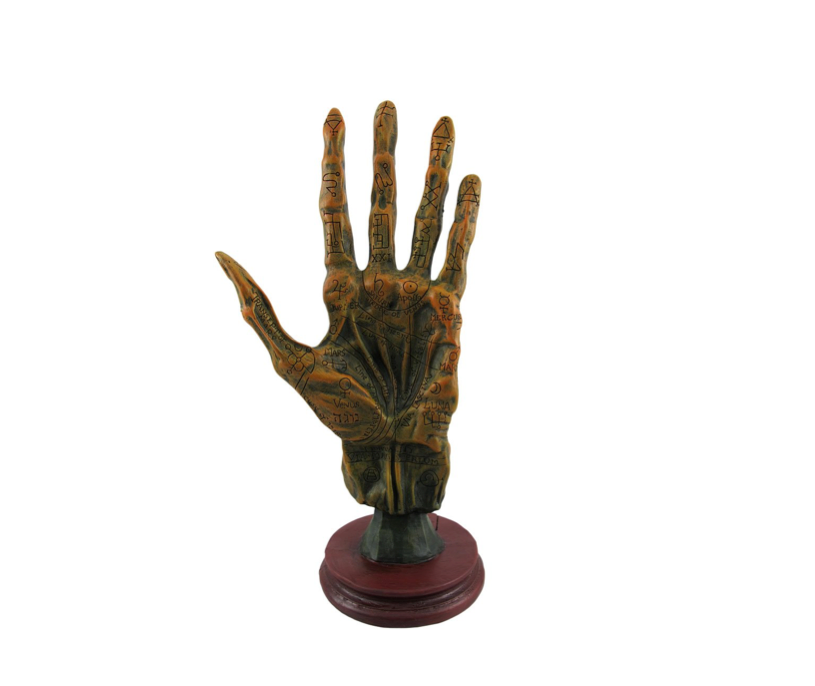 This mummified hand that teaches palmistry