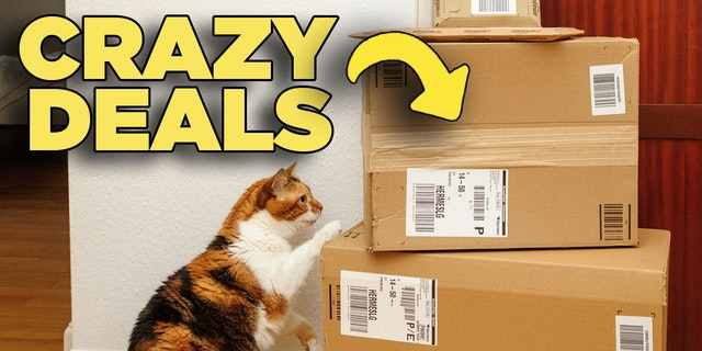 Cat pawing at Amazon boxes