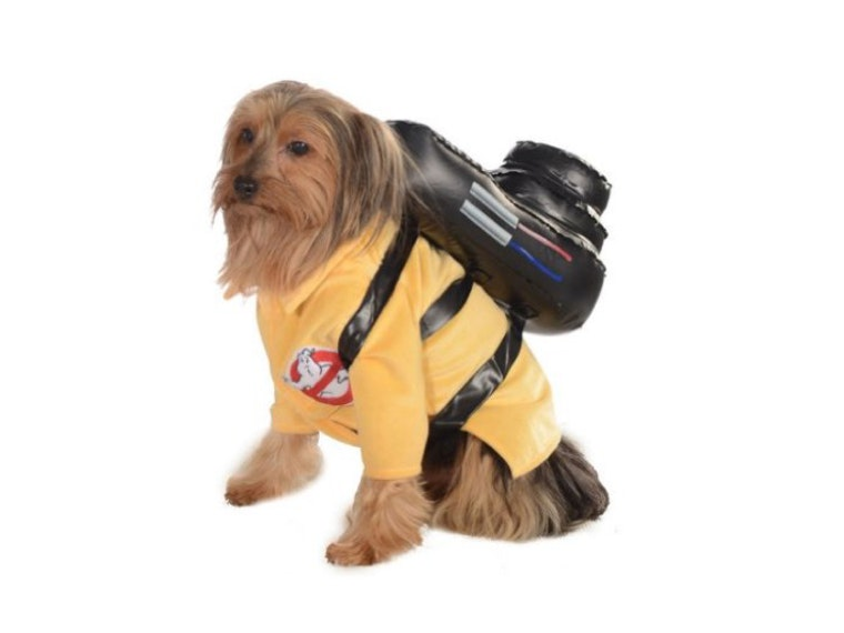 This costume for dogs that ain't afraid of no 👻👻👻
