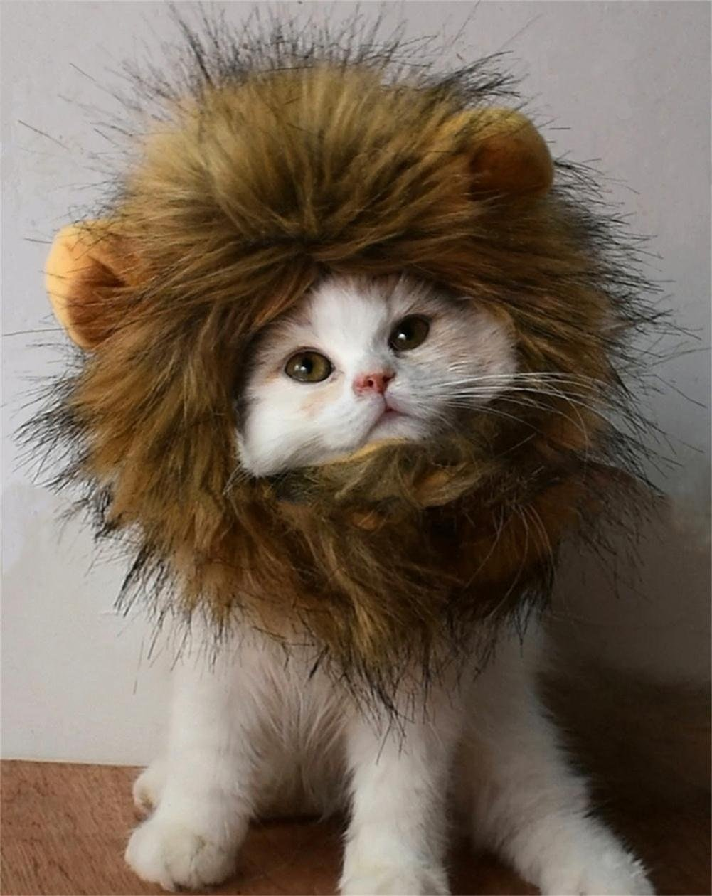 Thiscostume for kitties who think they're king of the jungle
