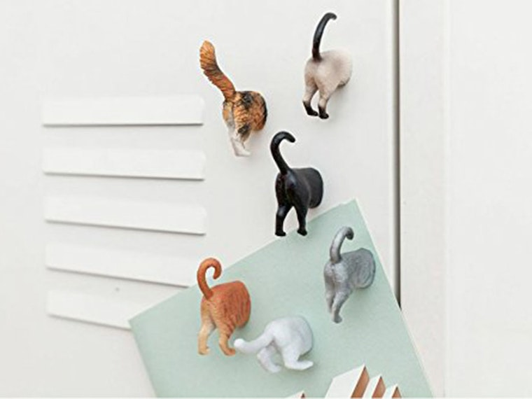These cat butt magnets