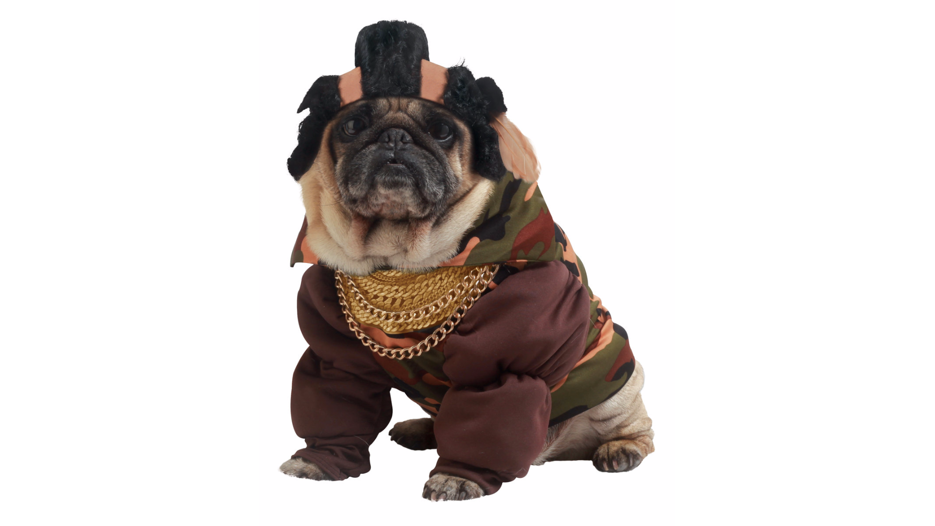 This costume that turns your dog into the legendary Mr. T