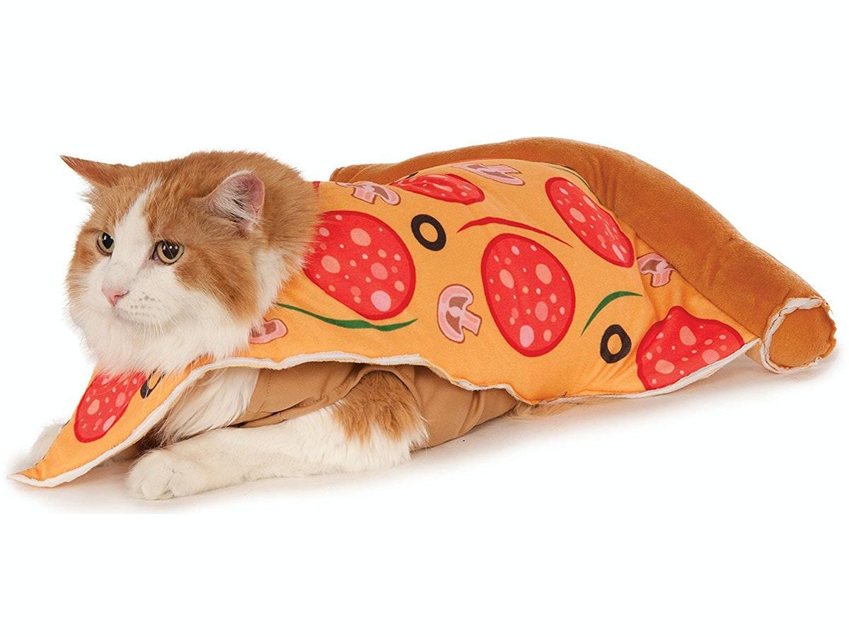 This cheesy costumeforyour cat🍕