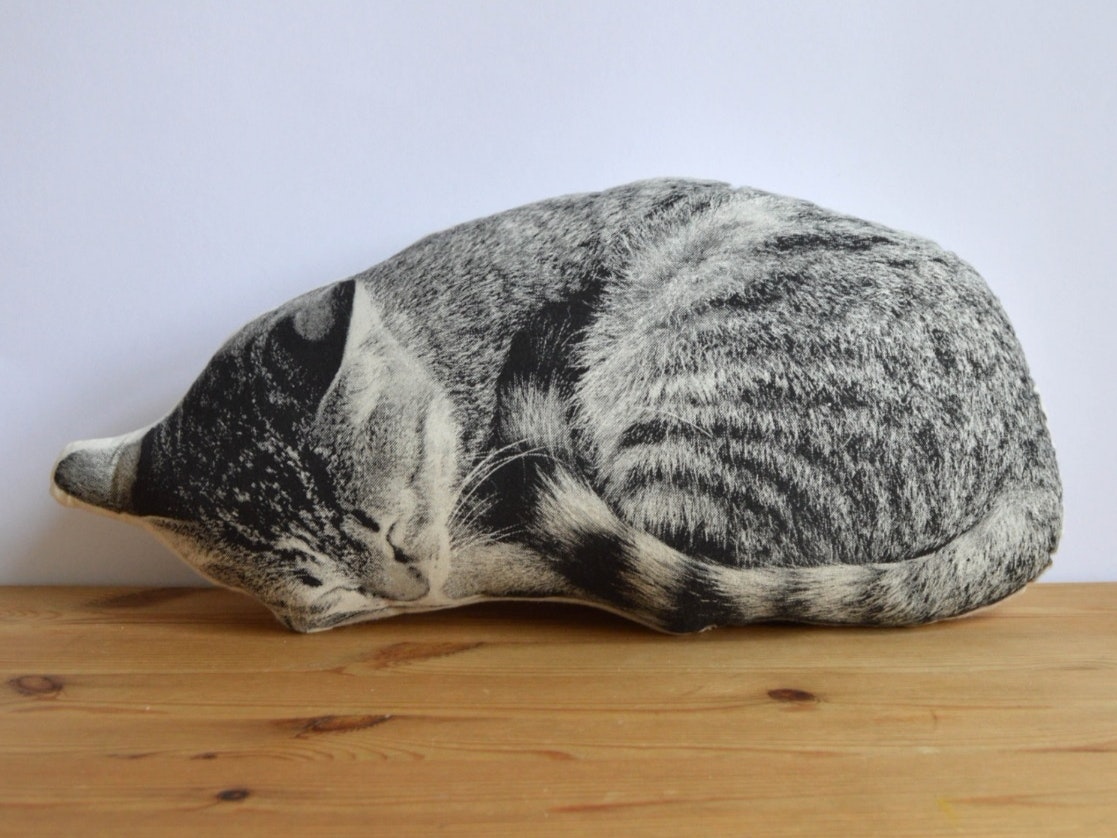 No,this is not an actual cat