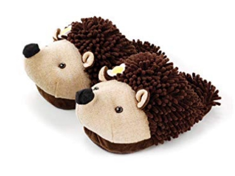 A pair of hedgehog slippers for your hedgehog