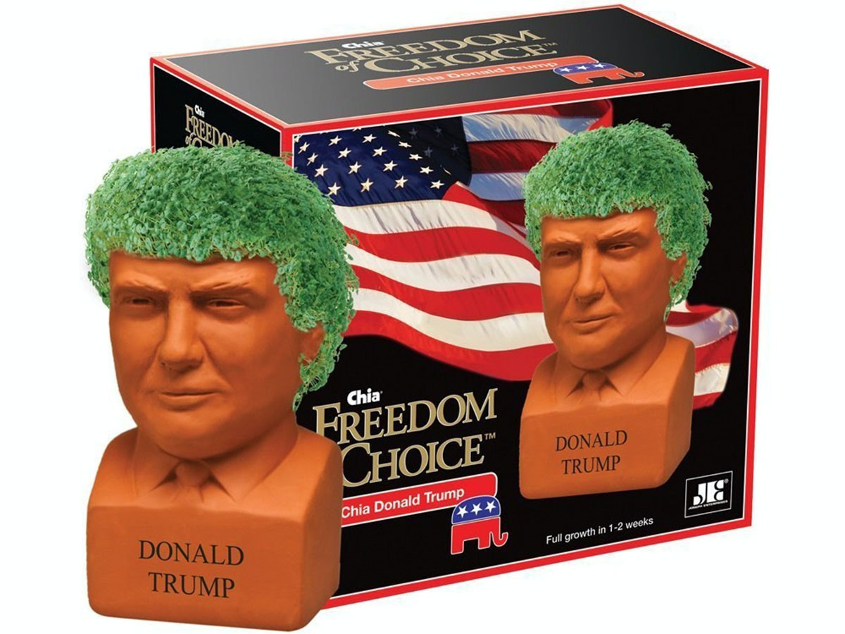 This Chia Pet for when you love the president so much you want to grow your own