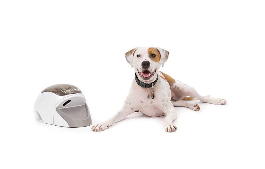 This gadget that helps you trainyourdoggo